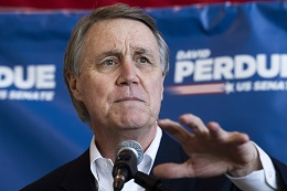 Georgia Senator David Perdue Privately Pushed for a Tax Break for Rich Sports Teamowners